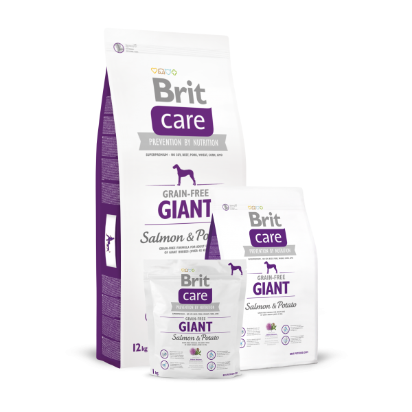 BRIT CARE GRAIN FREE GIANT SALMON AND POTATO