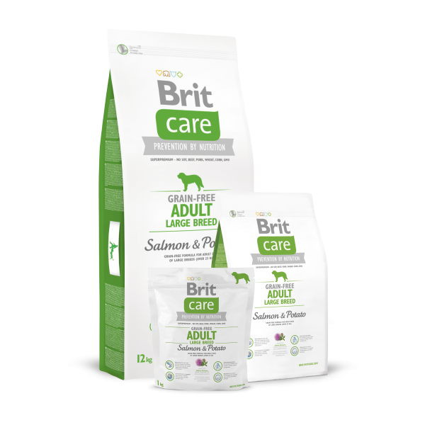 BRIT CARE GRAIN FREE ADULT LARGE BREED SALMON AND POTATO