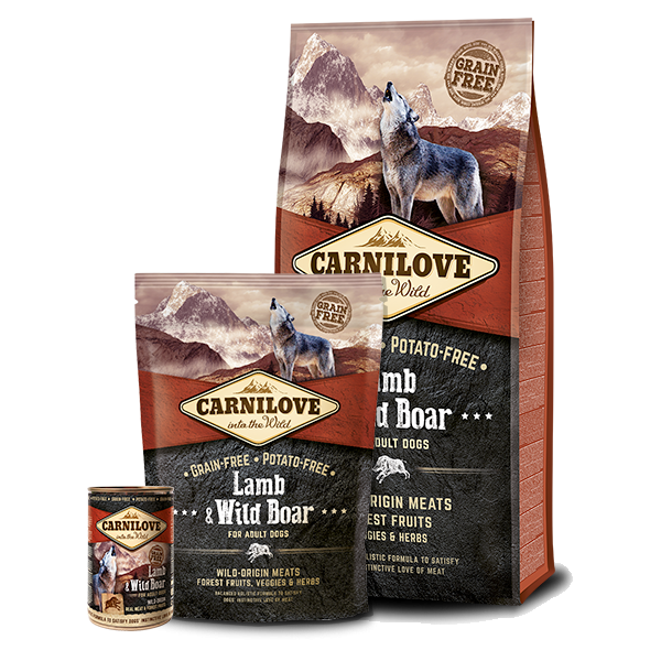 CARNILOVE LAMB AND WILD BOAR ADULT DOG