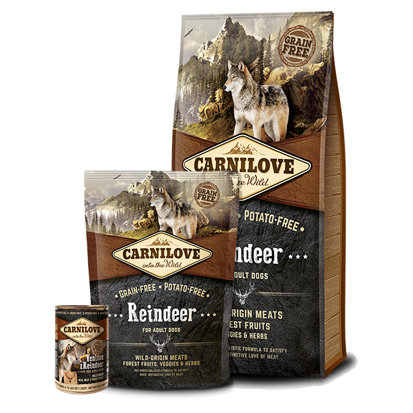 CARNILOVE RAINDEER ADULT DOG