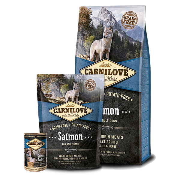 CARNILOVE SALMON ADULT DOG